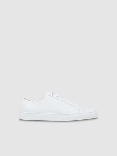 Morgan Low Sneakers White  2d0e98d1a